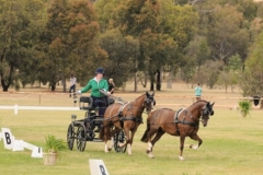 Chuckie Radnedge Open Horse Tandem winner