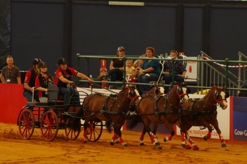 Equitana 2014 Rachel Haslau Team2