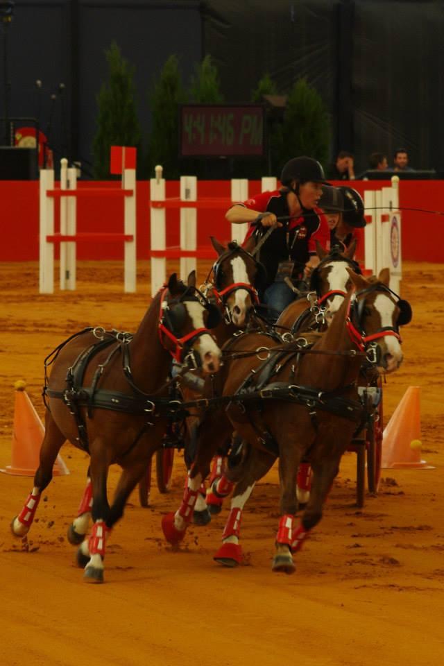 Equitana 2014 Rachel Haslau Team4