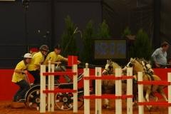 Equitana 2014 Bram Chardon Team4