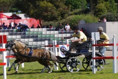 Equitana 2014 Bram Chardon3