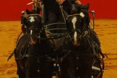 Equitana 2014 Tina Marshall Team
