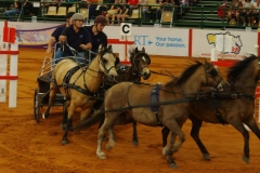 Equitana 2014 Wayne Armstrong Team
