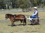 Range Carriage Club QLD
