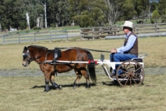 Range Carriage Club - Queensland 1