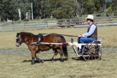 Range Carriage Club - Queensland 1