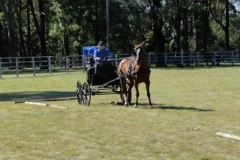 Range Carriage Club - Queensland 4