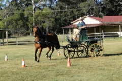 Range Carriage Club - Queensland 5