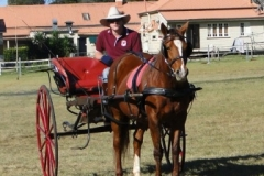 Range Carriage Club - Queensland 6