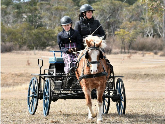Young Driver Bungendore Dressage 2018 Linda Mace 5